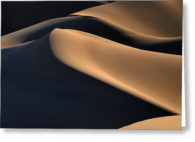 Joe Schofield Greeting Cards - Sinuous Dunes Greeting Card by Joe Schofield