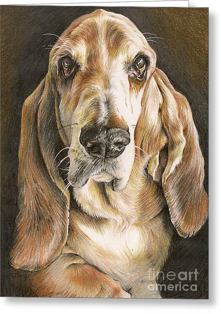 Basset Drawings Greeting Cards - Sir Hubert the Basset Hound  Greeting Card by Karina Griffiths