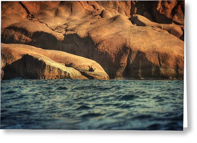 Wave Sublime Greeting Cards - Siren Rocks II Greeting Card by Taylan Soyturk