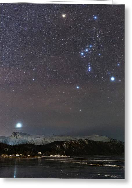 Sirius Rising With Orion Greeting Card by Tommy Eliassen