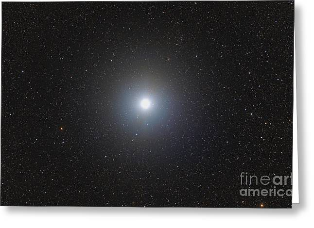 Starforming Greeting Cards - Sirius, The Brightest Star In The Night Greeting Card by Rogelio Bernal Andreo