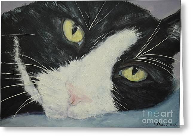 Pictures Of Cats Greeting Cards - Sissi the Cat 1 Greeting Card by Raija Merila