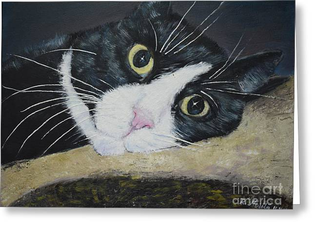 Pictures Of Cats Paintings Greeting Cards - Sissi the Cat 3 Greeting Card by Raija Merila