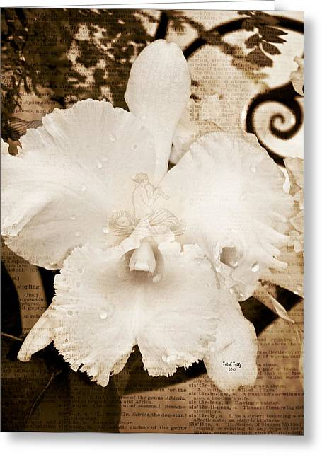 Sisterly Greeting Cards - Sisterly Orchid Greeting Card by Trish Tritz