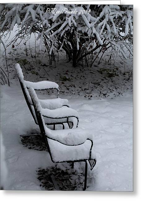Sit-ins Greeting Cards - Sit a Spell in Snow Greeting Card by PJQandFriends Photography