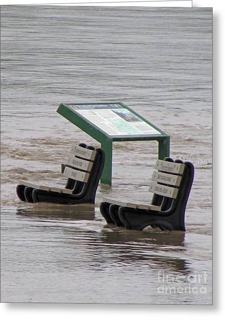 River Flooding Greeting Cards - Sit Where Greeting Card by Jamie  Smith