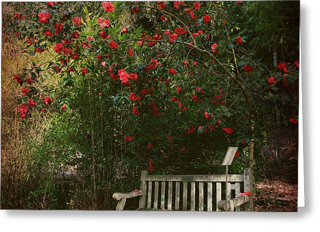 Sit With Me Here Greeting Card by Laurie Search