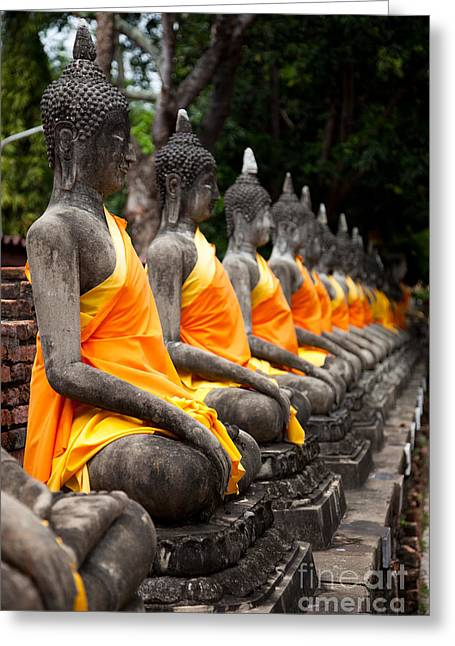 Ayuthaya Greeting Cards - Sitting Buddhas  Greeting Card by Fototrav Print