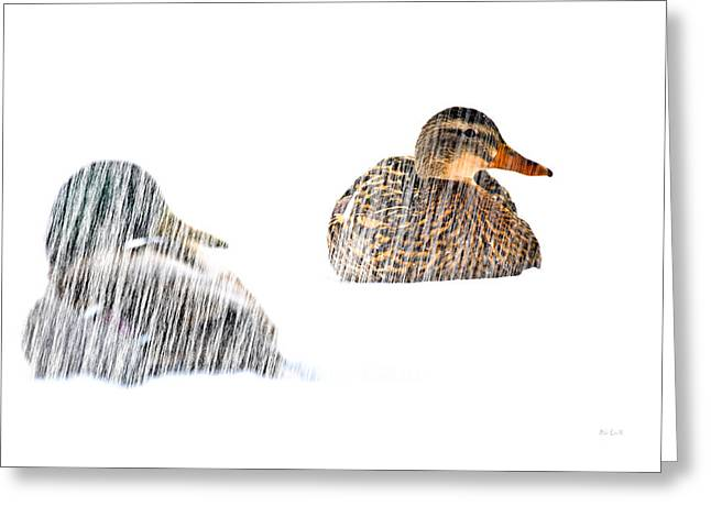Mallards Greeting Cards - Sitting Ducks in a blizzard Greeting Card by Bob Orsillo