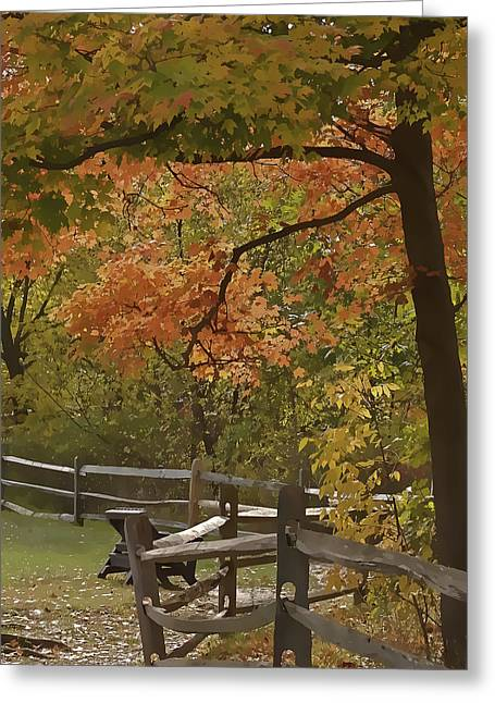 Cvnp Greeting Cards - Sitting Pretty Greeting Card by Jack R Perry
