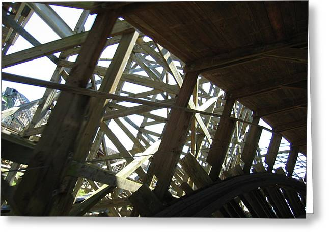 America Photographs Greeting Cards - Six Flags America - Roar Roller Coaster - 12126 Greeting Card by DC Photographer