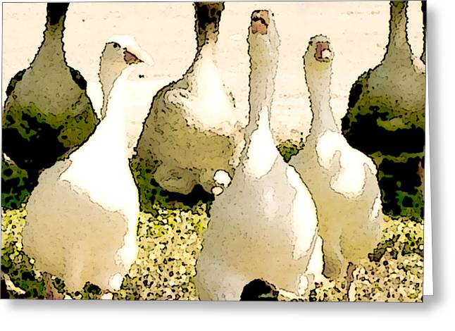 Popular Goose Images Greeting Cards - Six Geese and a Duck Greeting Card by Artist and Photographer Laura Wrede