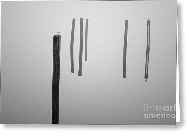 White River Scene Digital Art Greeting Cards - Six Pilings Taunton River Greeting Card by David Gordon