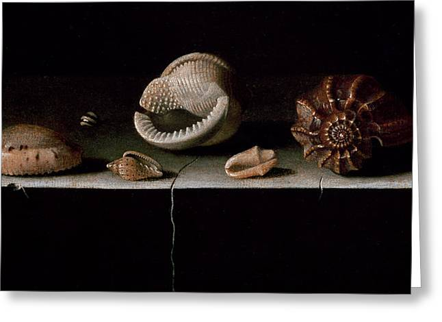 Tabletop Greeting Cards - Six Shells on a Stone Shelf Greeting Card by Adrian Coorte