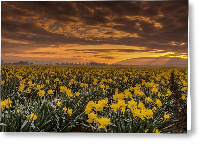 Washington State Greeting Cards - Skagit Valley Sunrise Greeting Card by Puget  Exposure