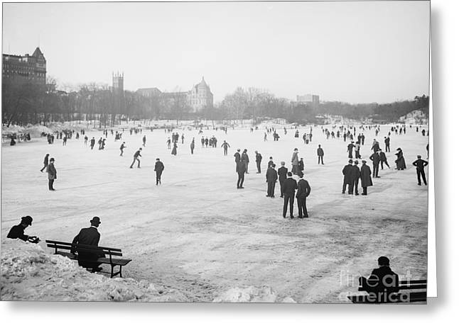 Ice-skating Greeting Cards - Skating in Central Park Greeting Card by Anonymous