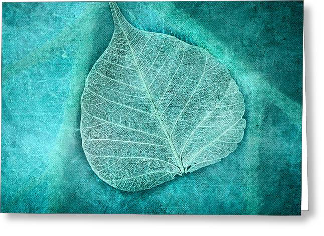 Leaf Print Greeting Cards - Skeletal Leaf Greeting Card by Bonnie Bruno
