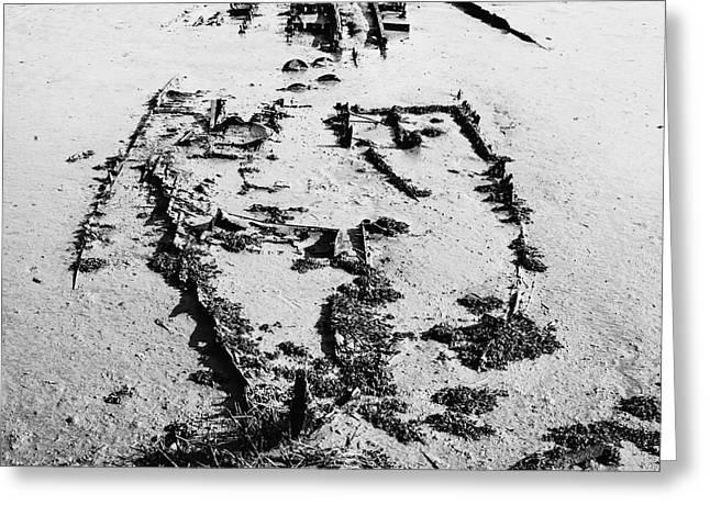 Docked Sailboats Greeting Cards - Skeleton Boat Greeting Card by Svetlana Sewell