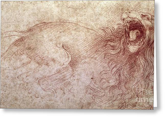 Roar Greeting Cards - Sketch of a roaring lion Greeting Card by Leonardo Da Vinci