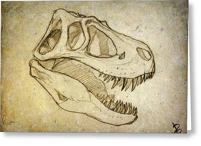 Geology Drawings Greeting Cards - Sketch of Janes Skull Greeting Card by Paul Gioacchini