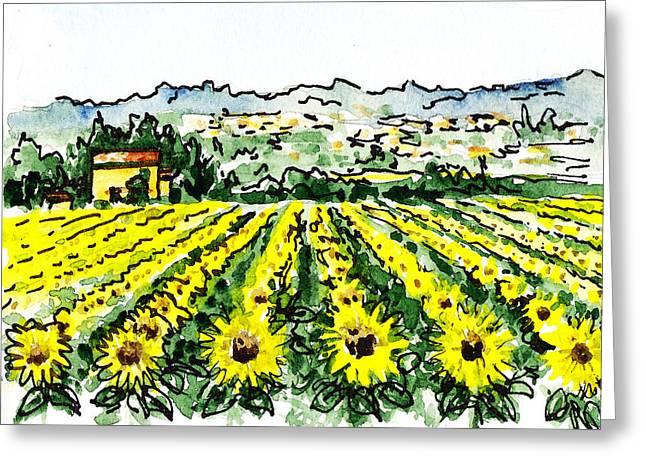 Kids Books Greeting Cards - Sketching Italy Sunflowers of Tuscany Greeting Card by Irina Sztukowski