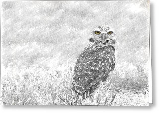 Crosswalk Digital Greeting Cards - Sketching The Wise Guy Greeting Card by Beverly Guilliams