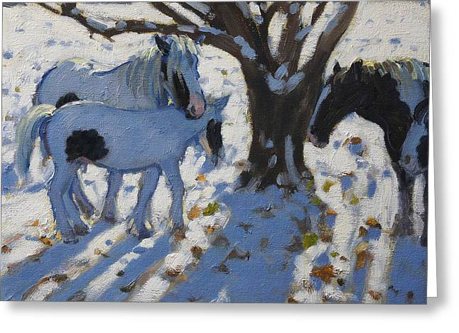 Winter Light Paintings Greeting Cards - Skewbald Ponies in Winter Greeting Card by Andrew Macara