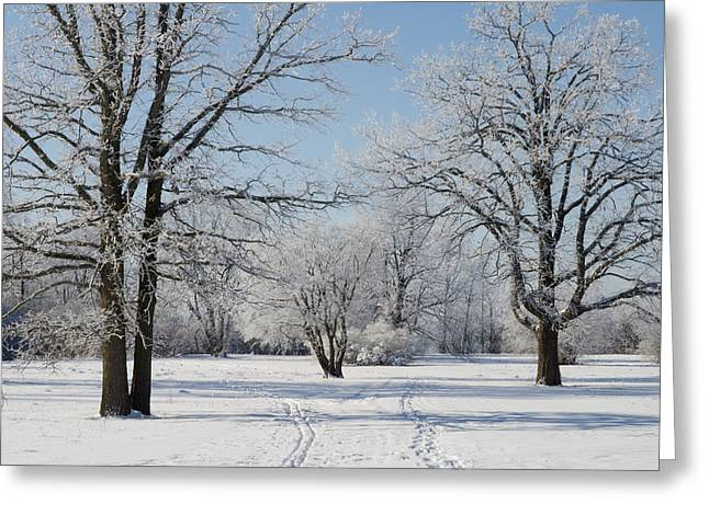 Hoar Frost Greeting Cards - Skiing on a Hoar Frost Morning Greeting Card by Rob Huntley