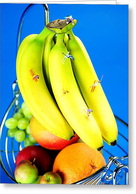 Mango Greeting Cards - Skiing on banana little people on food Greeting Card by Paul Ge