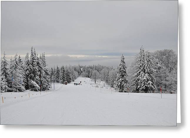 Snow-covered Landscape Greeting Cards - Skiing the Slopes of Poland Greeting Card by Mountain Dreams