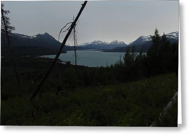 Skilak Lake In Kenai Alaska Greeting Card by Nikki Jauron