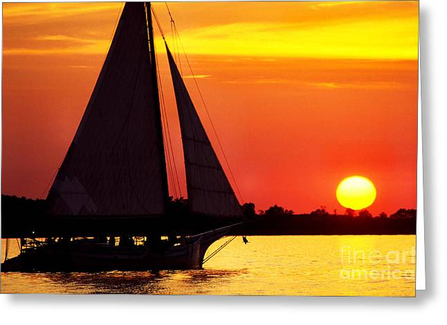 Thomas R. Fletcher Greeting Cards - Skipjack at Sunset Greeting Card by Thomas R Fletcher