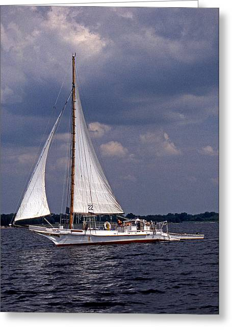 Sailboat Photos Greeting Cards - Skipjack Ellsworth Greeting Card by Skip Willits