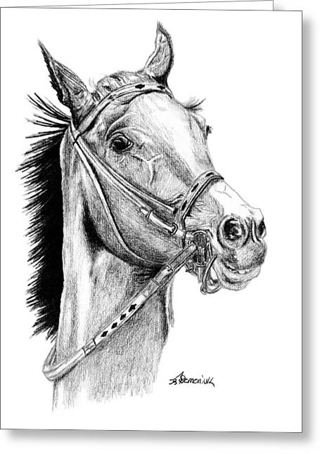 Race Horse Drawings Greeting Cards - Skittish Race Greeting Card by Kayleigh Semeniuk