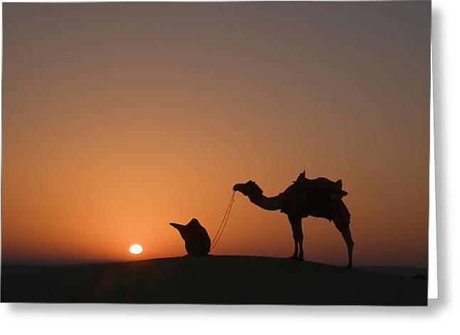 Breezy Greeting Cards - SKN 0879 The Breezy Sunrise Greeting Card by Sunil Kapadia