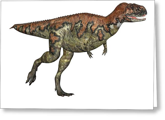 Skorpiovenator Dinosaur Greeting Card by Friedrich Saurer