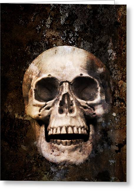 Skulls Photographs Greeting Cards - Skull In Earth Greeting Card by Amanda And Christopher Elwell