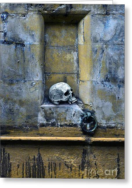 Old Relics Greeting Cards - Skull in Wall Greeting Card by Jill Battaglia