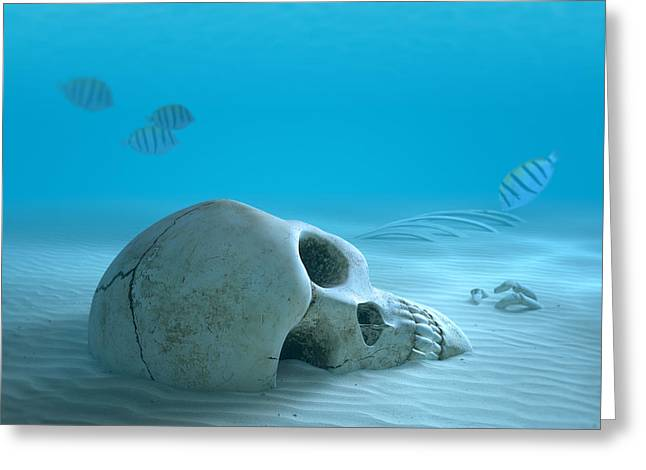 Danger Greeting Cards - Skull on sandy ocean bottom Greeting Card by Johan Swanepoel