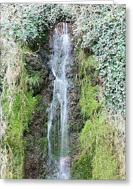 Arabian Knights Greeting Cards - Skulls and Faces Waterfall Greeting Card by Kevin F Cook