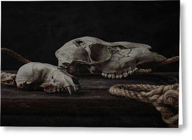 Rope Greeting Cards - Skulls with Rope Greeting Card by Everet Regal
