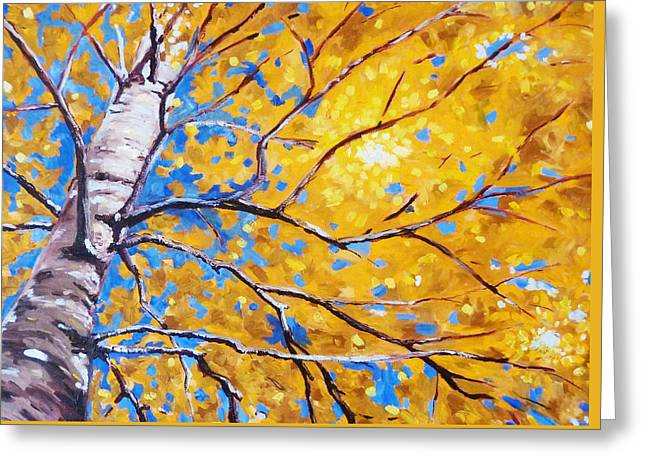 Sky Birch Greeting Card by Nancy Merkle