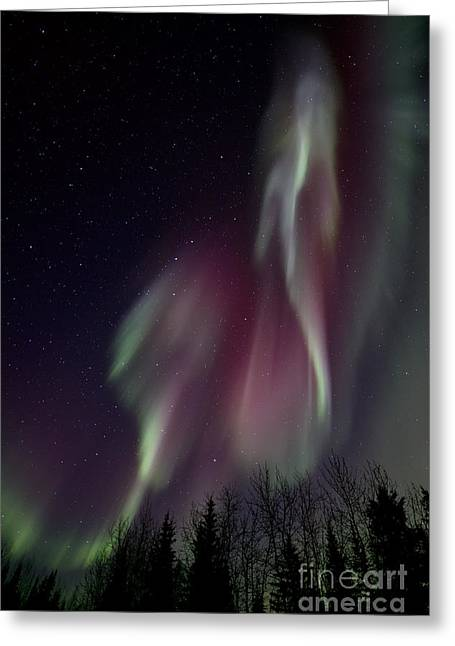 Glowing Greeting Cards - Sky Dancer Greeting Card by Priska Wettstein