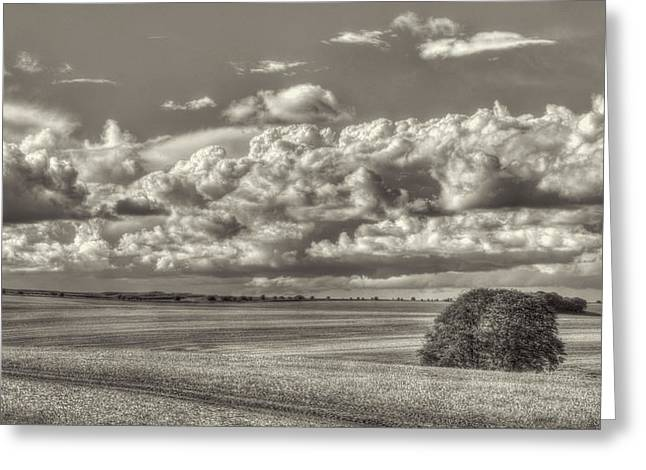 Countryside Greeting Cards - Sky Field 1 Greeting Card by Curtis Radclyffe