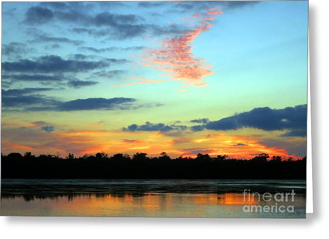 J N Ding Darling National Wildlife Refuge Greeting Cards - Sky Fire Greeting Card by Patricia Januszkiewicz
