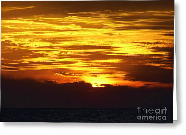 Reflection Of Sun In Clouds Greeting Cards - Sky On Fire Greeting Card by D Hackett