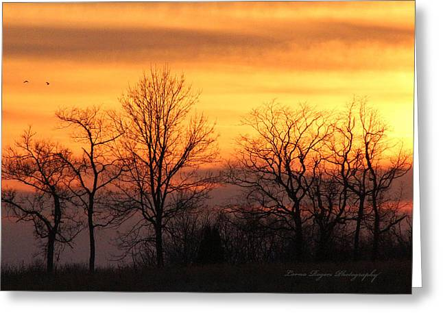 Most Viewed Digital Greeting Cards - Sky On Fire Greeting Card by Lorna Rogers Photography
