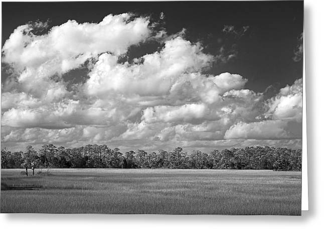 Sky Over St. Marks Greeting Card by Bill Chambers