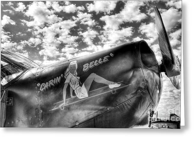 Single-engine Photographs Greeting Cards - Sky Pilot 2 BW Greeting Card by Mel Steinhauer