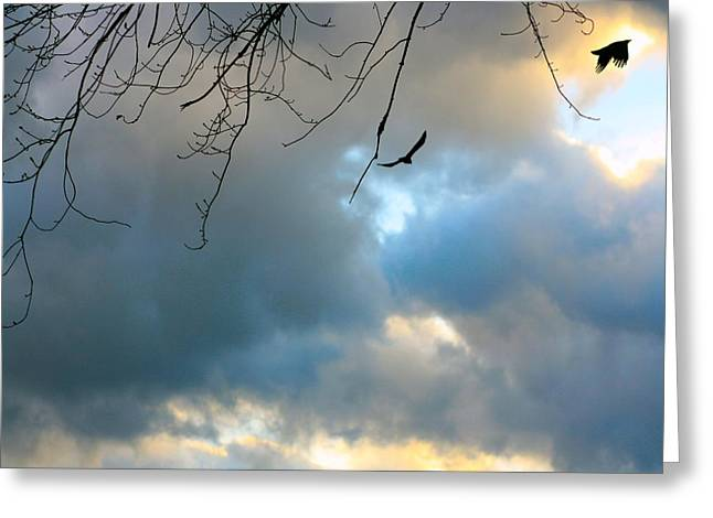 Common Crows Greeting Cards - Sky Pilots Greeting Card by Gothicolors Donna Snyder
